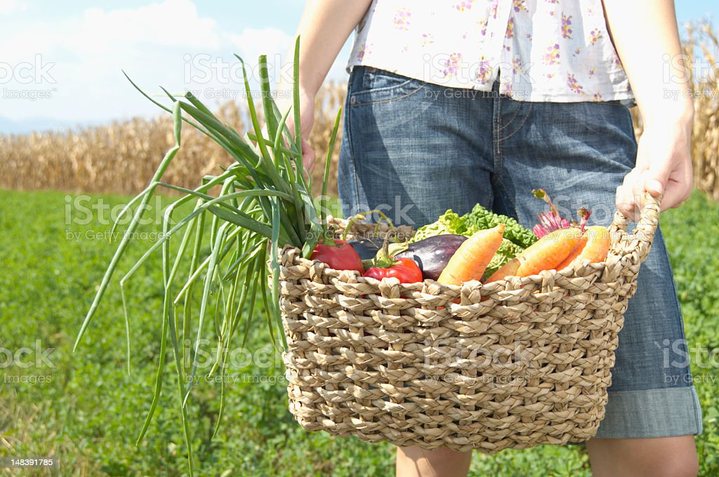 Teenage girl (16-18) holding basket of vegetables, mid section stock photo