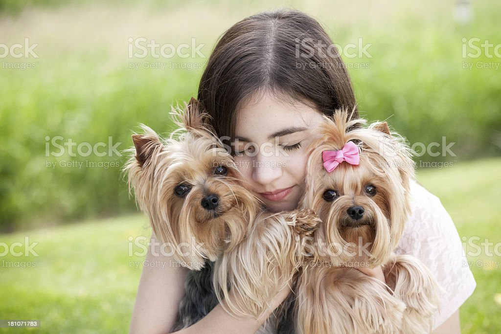 Teenage girl hugging her Yorkshire Terrier dogs royalty-free stock photo