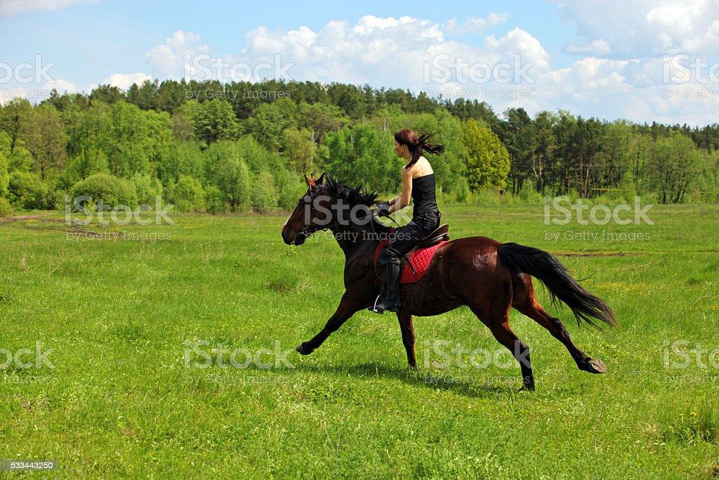 Teenage girl riding bay horse stock photo