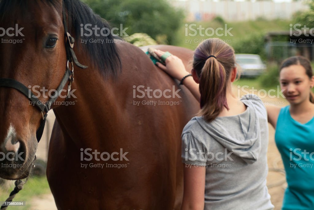 Teenage girls at  the Horse Stable stock photo