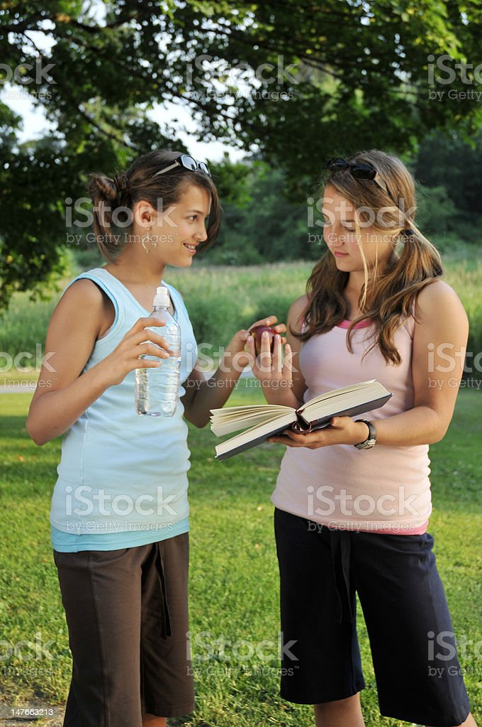 Teenage Girls Studying Together royalty-free stock photo