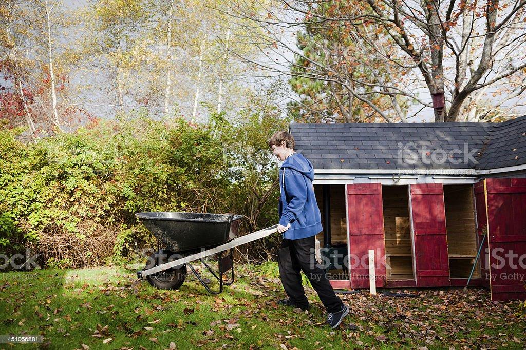 teenage kid with wheelbarrow clearing up back yard in autumn stock photo