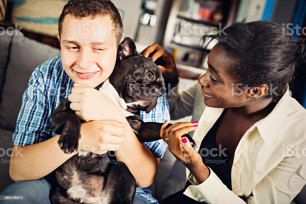 Teenage mixed race couple with French Bulldog in apartment stock photo