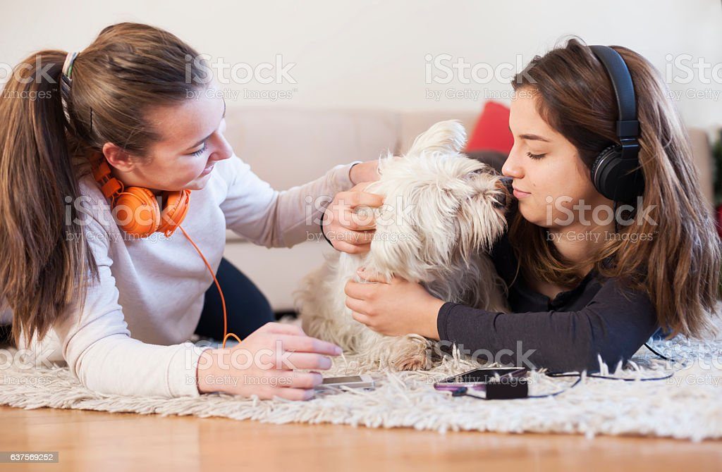 Teenage party with dog stock photo