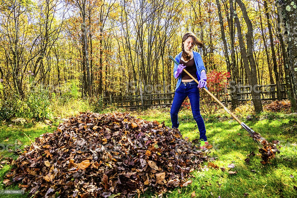 Teenager girl cleaning the backyard from fallen leaves stock photo