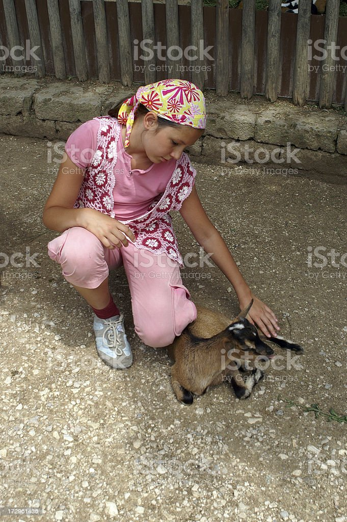 Teenager girl with a baby goat royalty-free stock photo