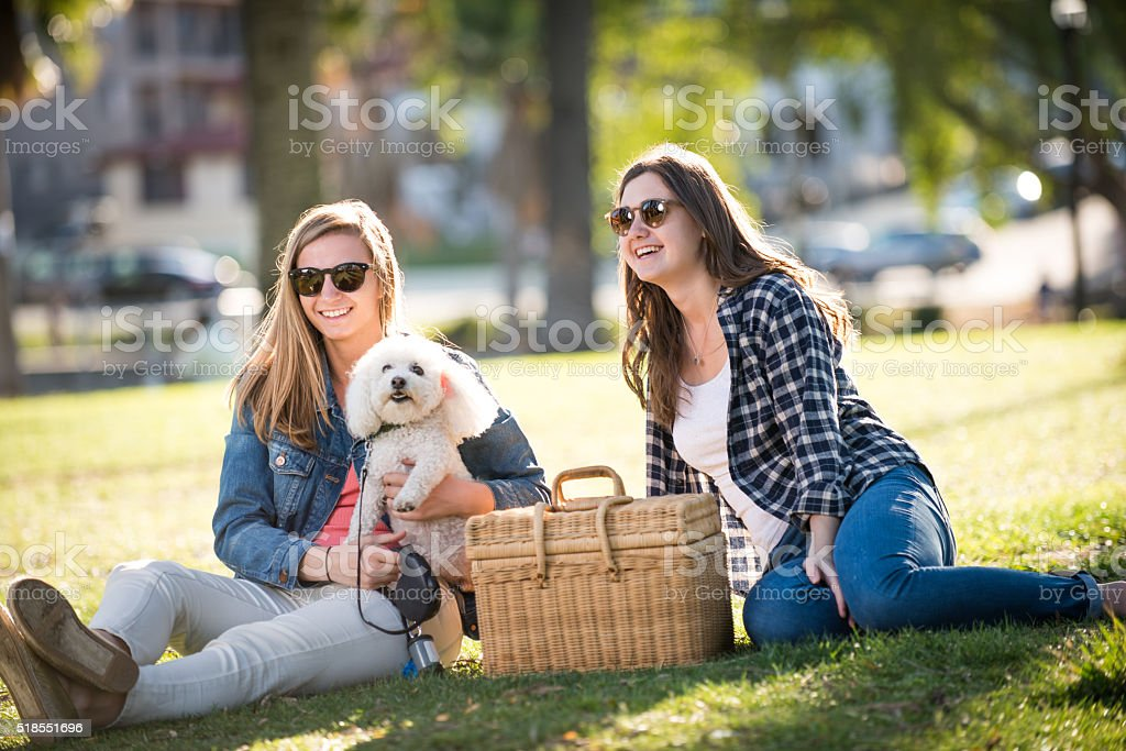 Teenagers on a Picnic with Their Dog stock photo