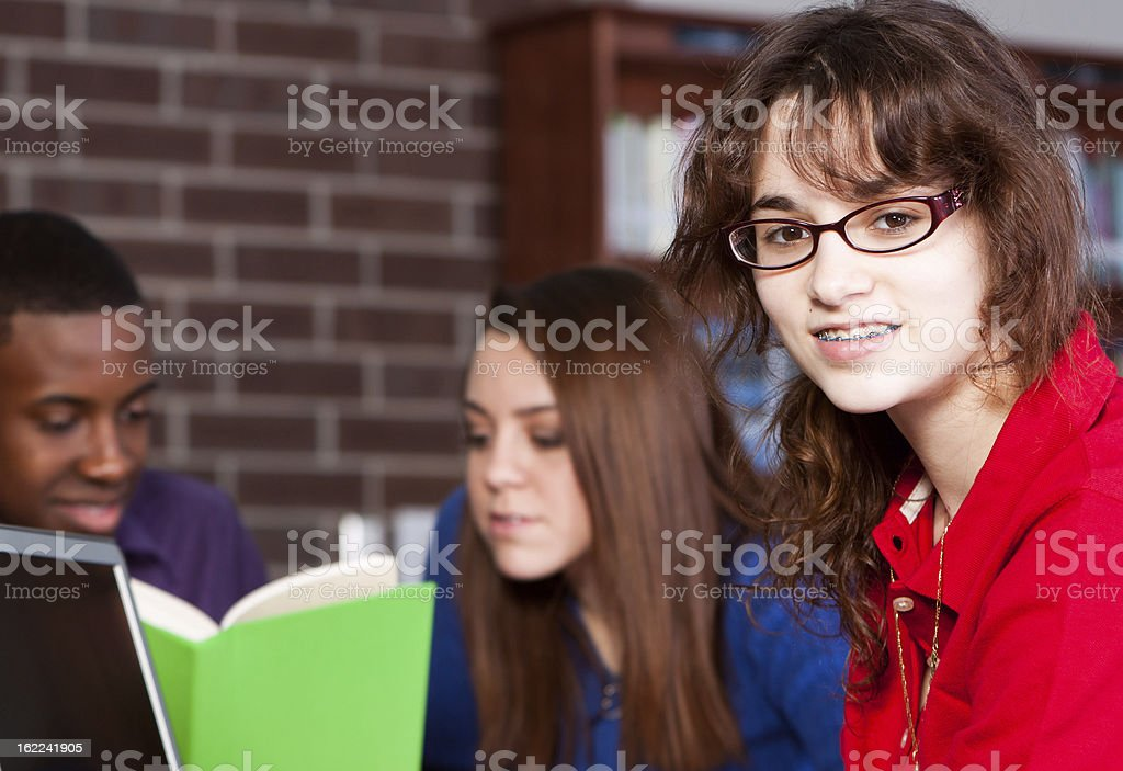 Teenagers Studying on Computer in School Library royalty-free stock photo