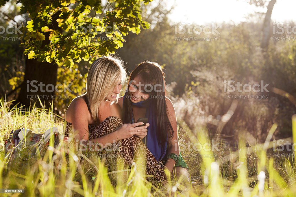 Teenagers texting royalty-free stock photo
