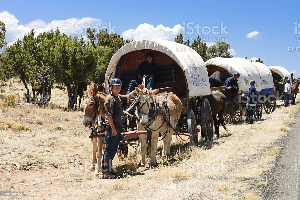 Teenagers traveling on covered wagons royalty-free stock photo