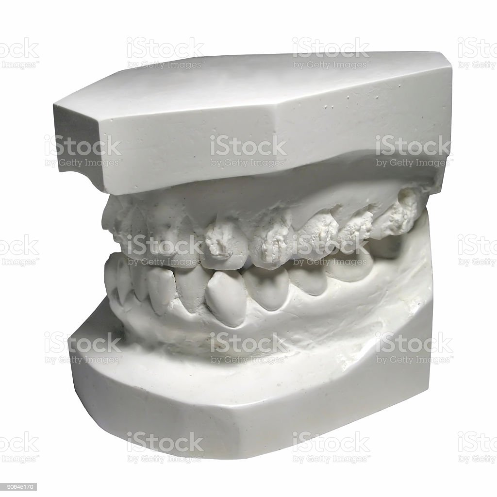 Teeth Mold ( Clip Path ) royalty-free stock photo