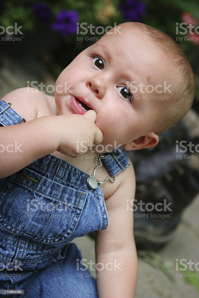 Teething pain royalty-free stock photo