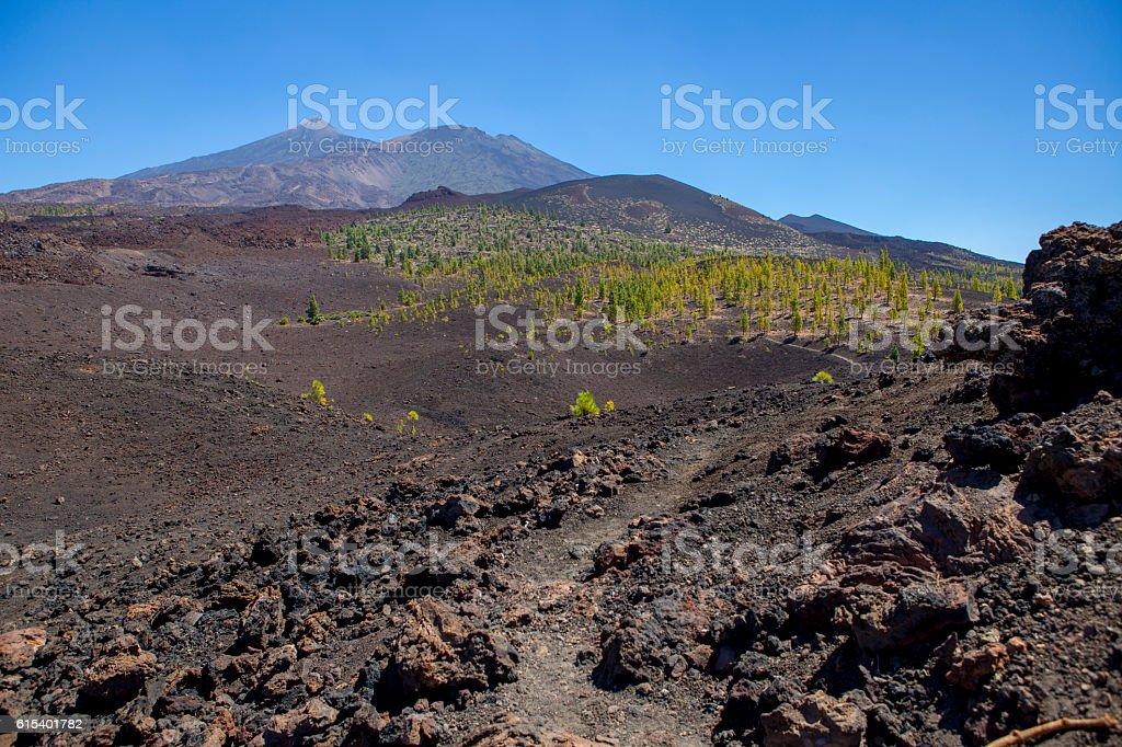 Teide and Pico Viejo - Tenerife stock photo