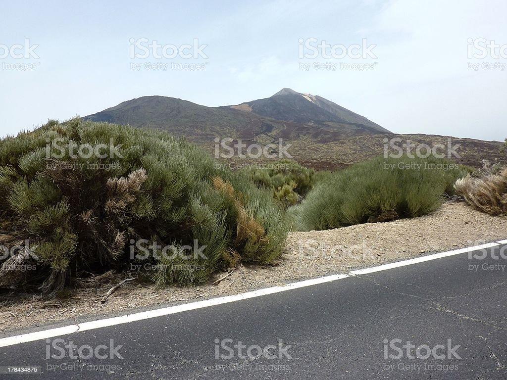 Teide national park, Tenerife Spain stock photo