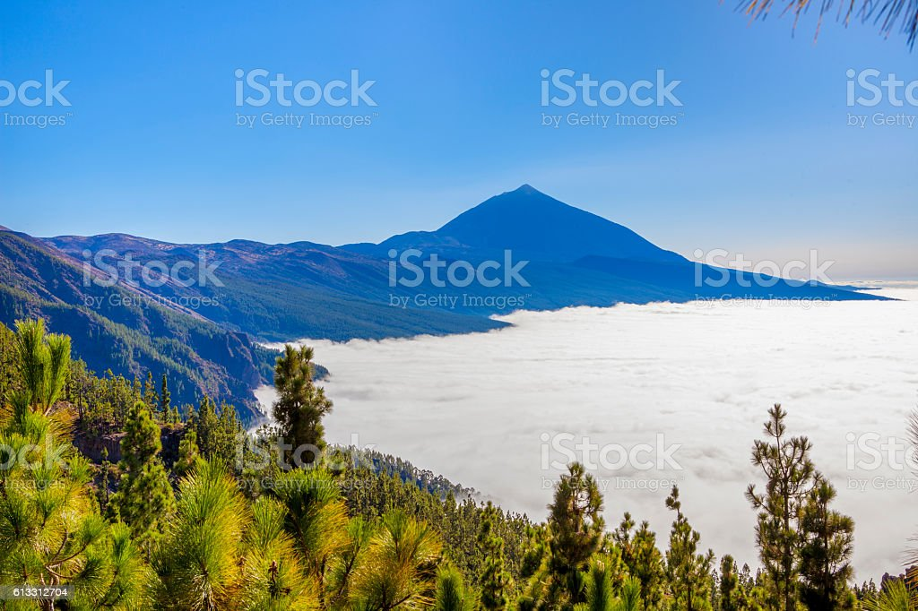 Teides Natural Park stock photo