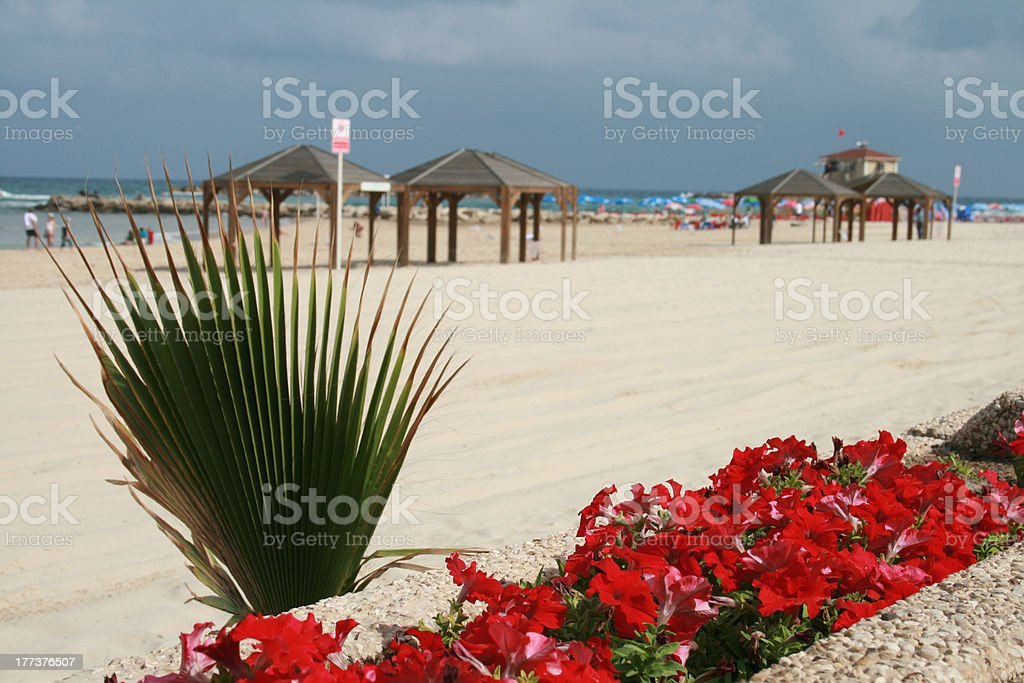 Playa de tel aviv - foto de stock