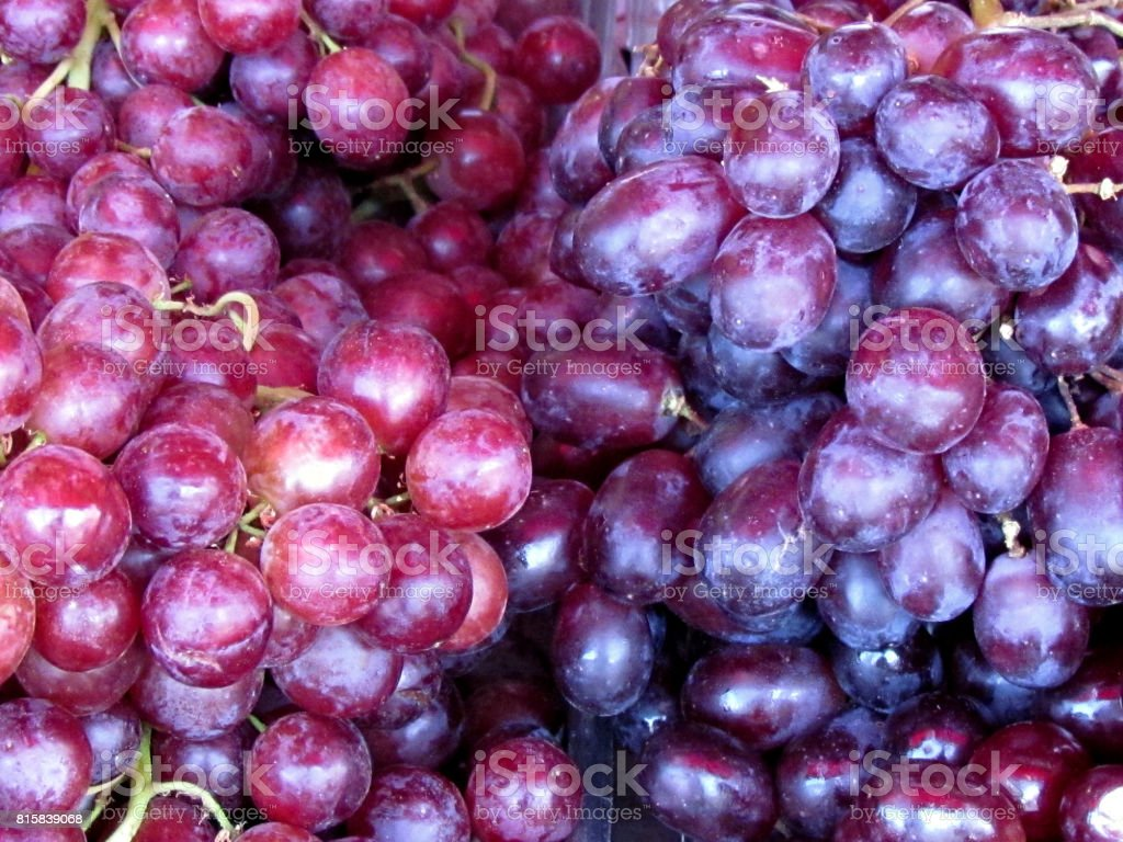 Tel Aviv grapes 2012 stock photo