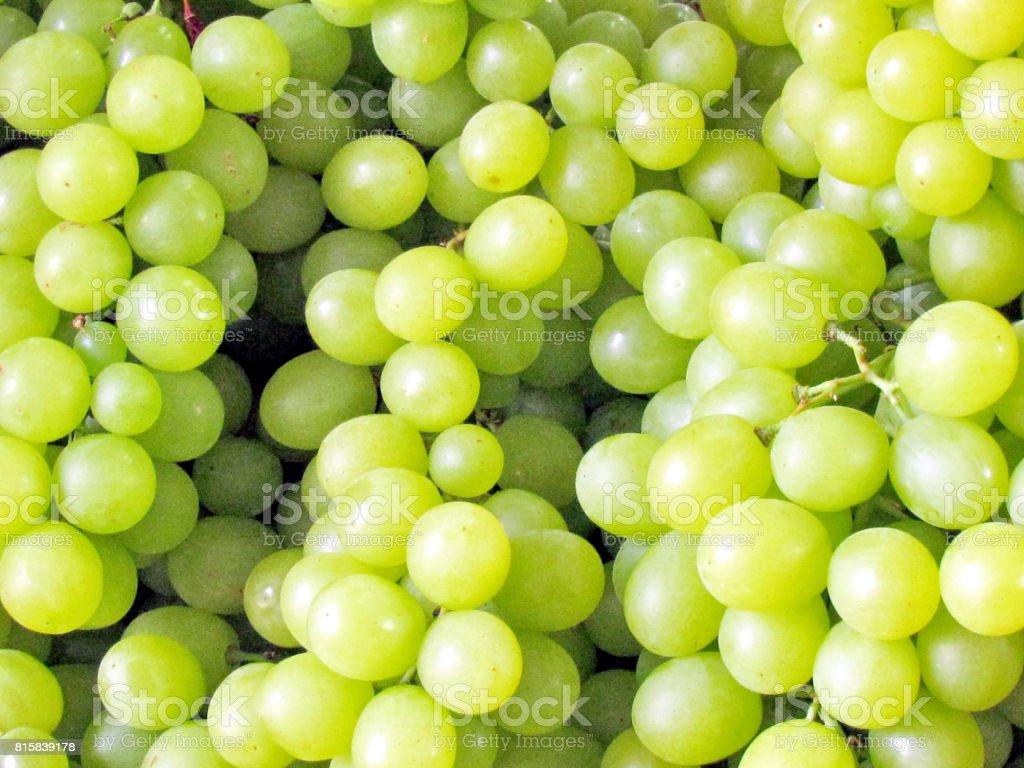 Tel Aviv green grapes 2012 stock photo