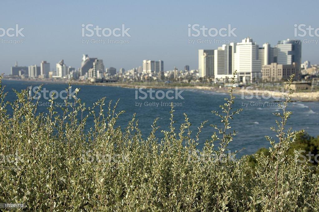 Tel Aviv skyline from Old Jaffa City (Israel) royalty-free stock photo