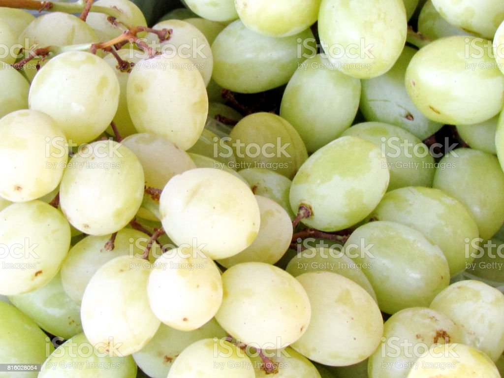 Tel Aviv sweet grapes 2012 stock photo