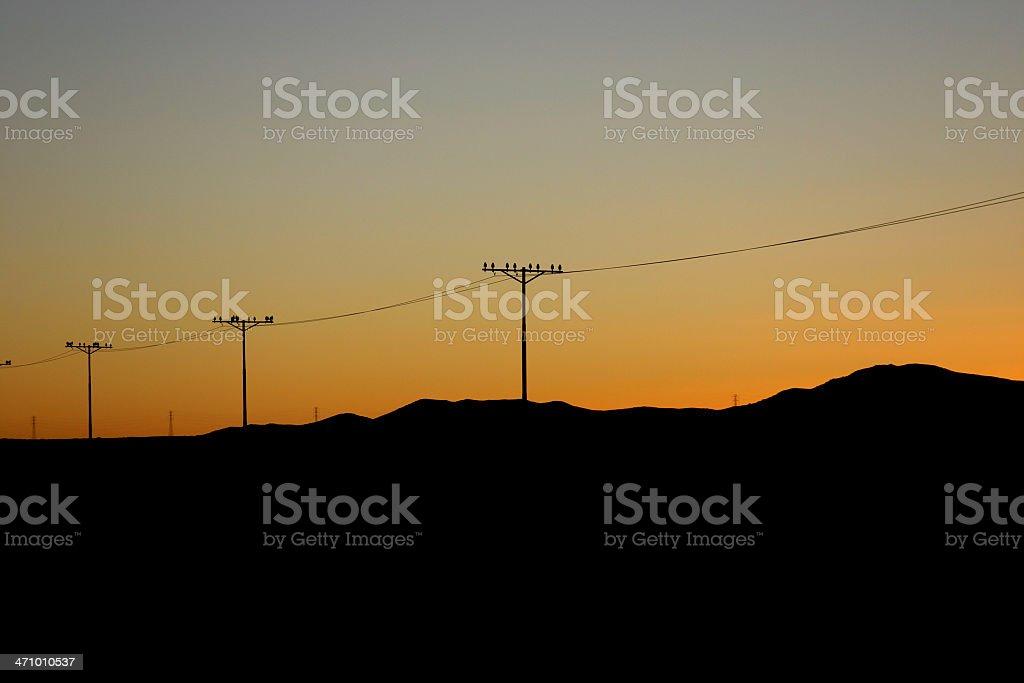 Telegraph Pole 12 stock photo