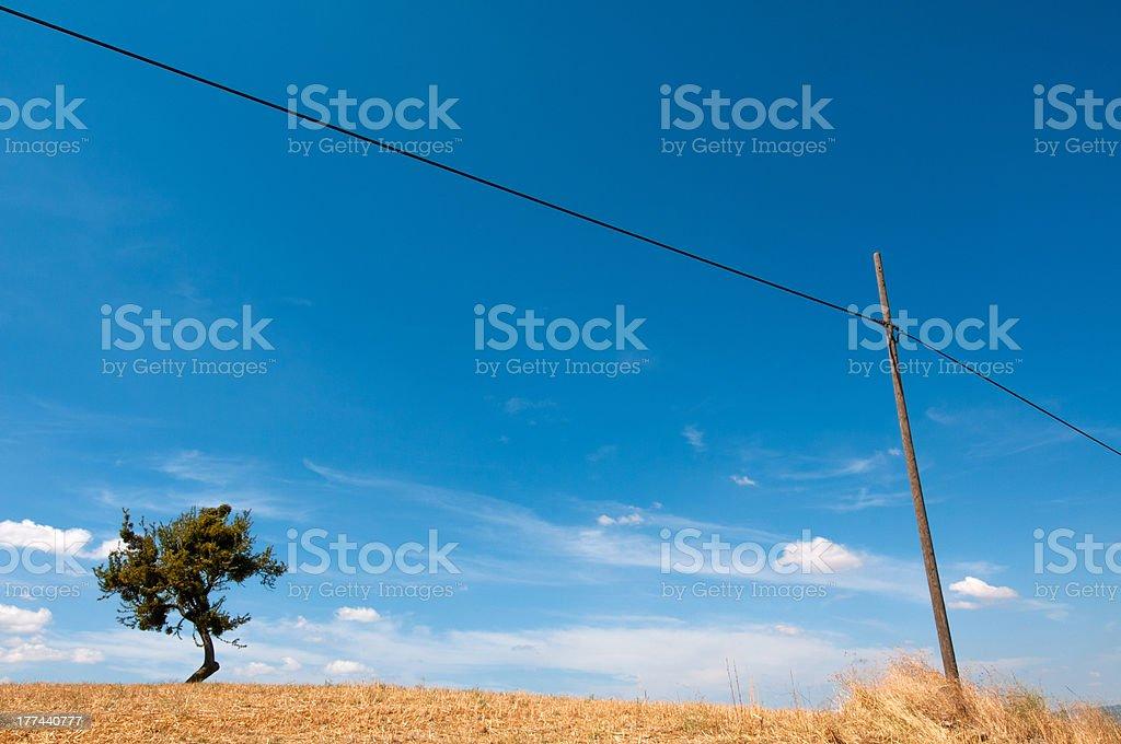 telephone pole stock photo