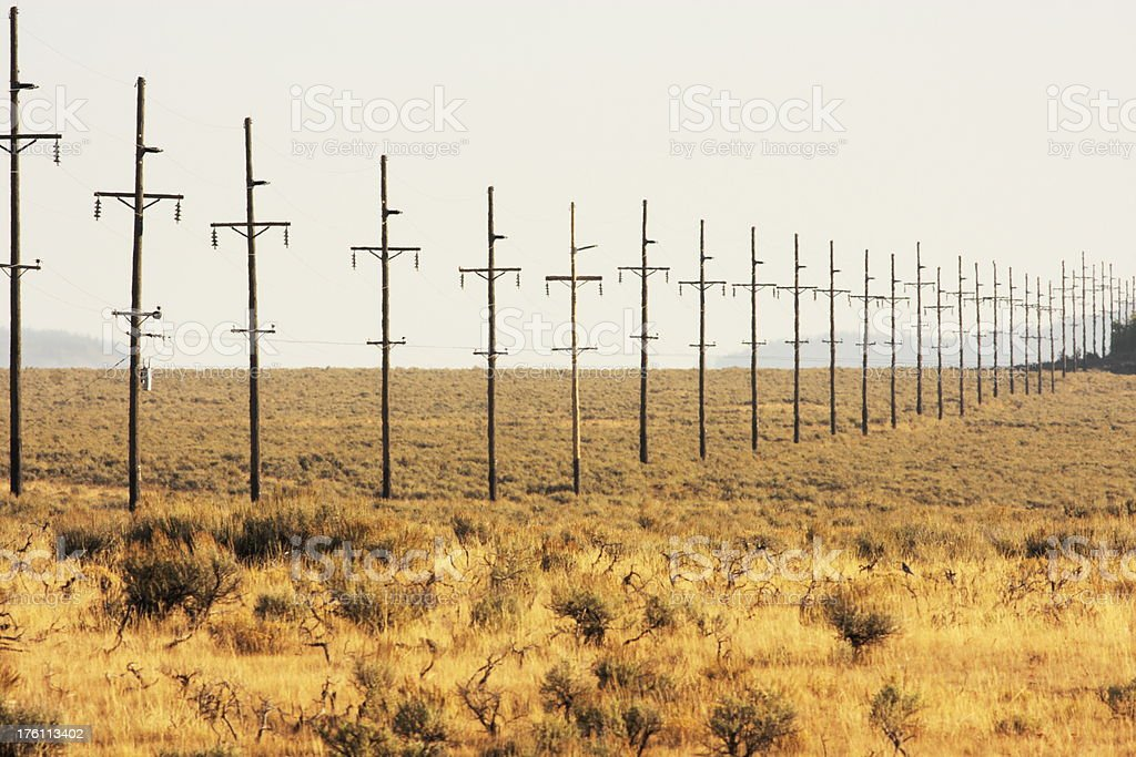 Telephone Pole Pylon Desert Landscape royalty-free stock photo
