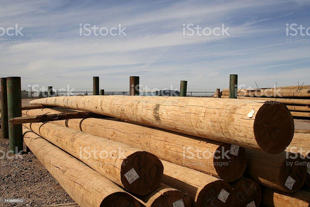 Telephone Poles stock photo
