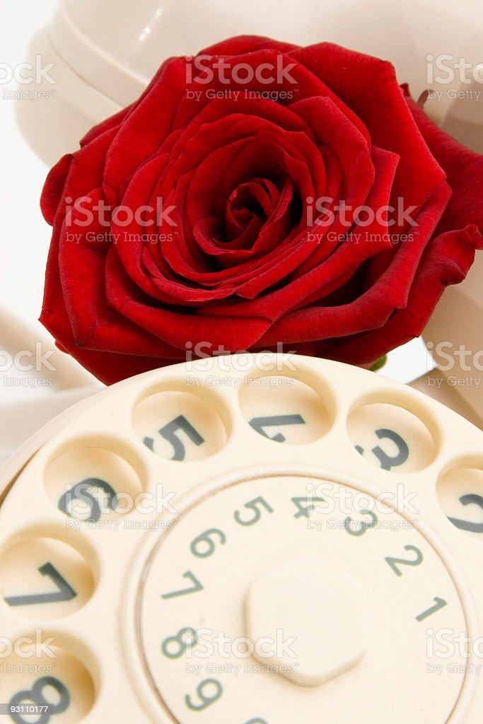 Telephonerose royalty-free stock photo