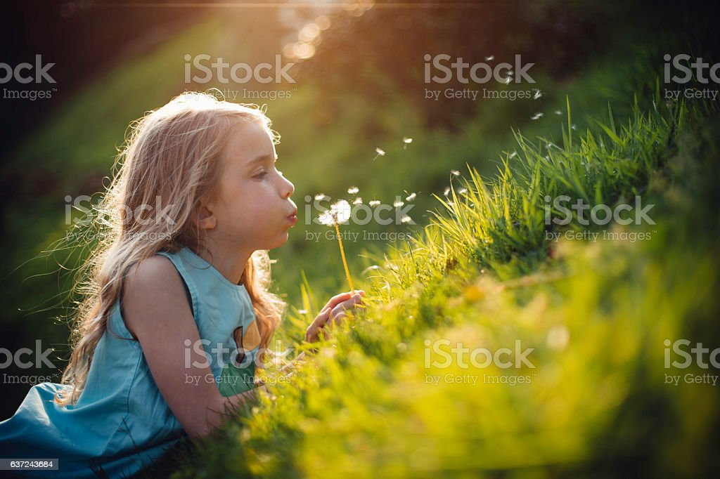 Telling the Time with Dandelions stock photo