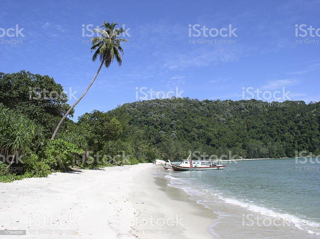 Teluk Duyung Beach in Penang Malaysia. stock photo