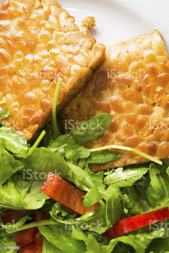 Tempeh and Salad stock photo