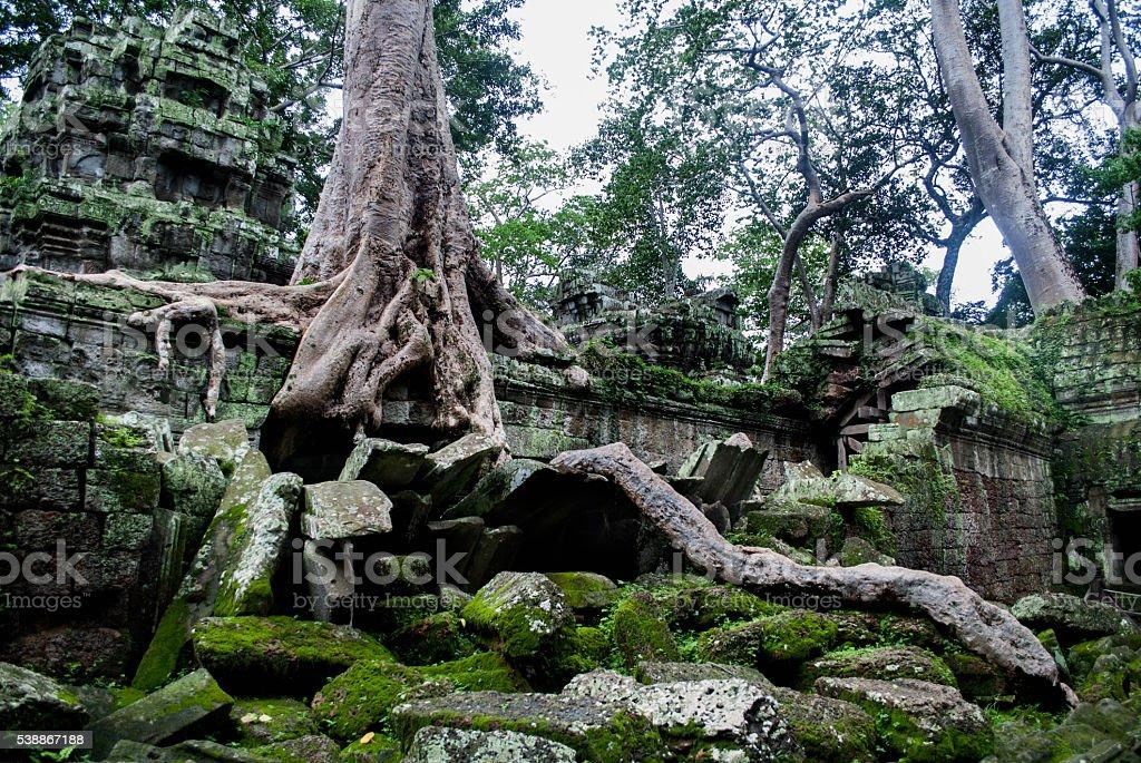 Temple angkor wat stock photo