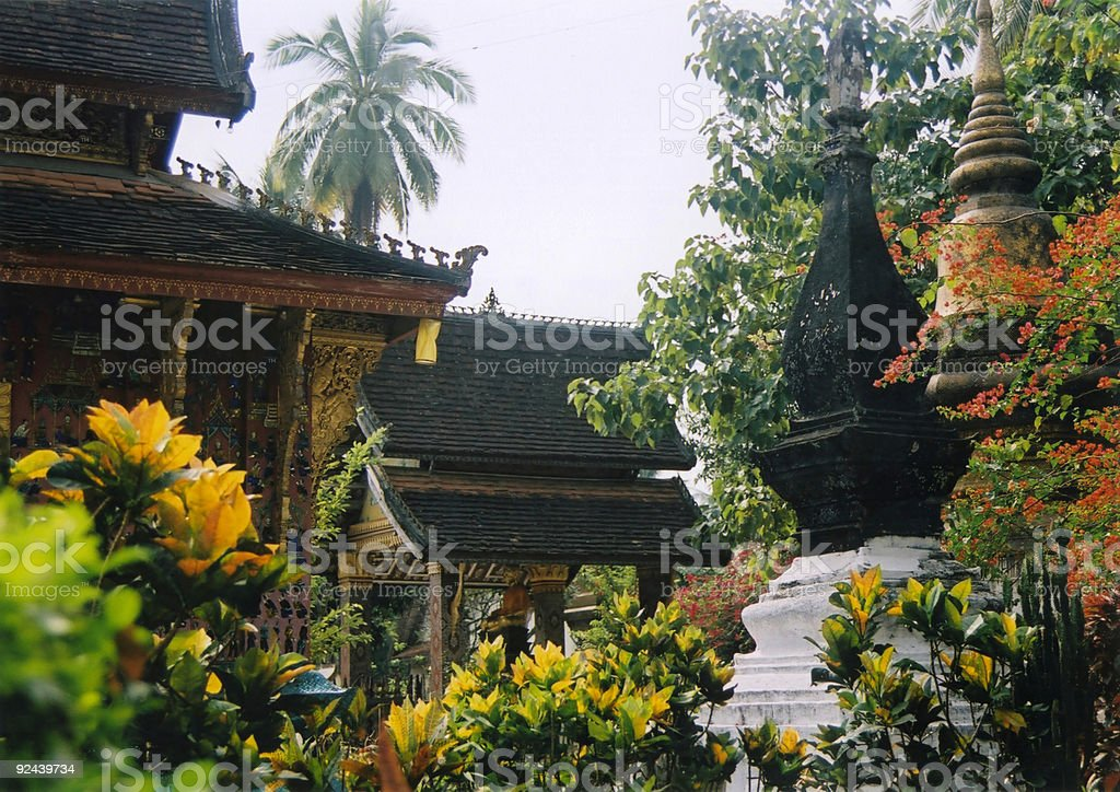 Temple Garden Tropical Flowers Luang Phabang royalty-free stock photo