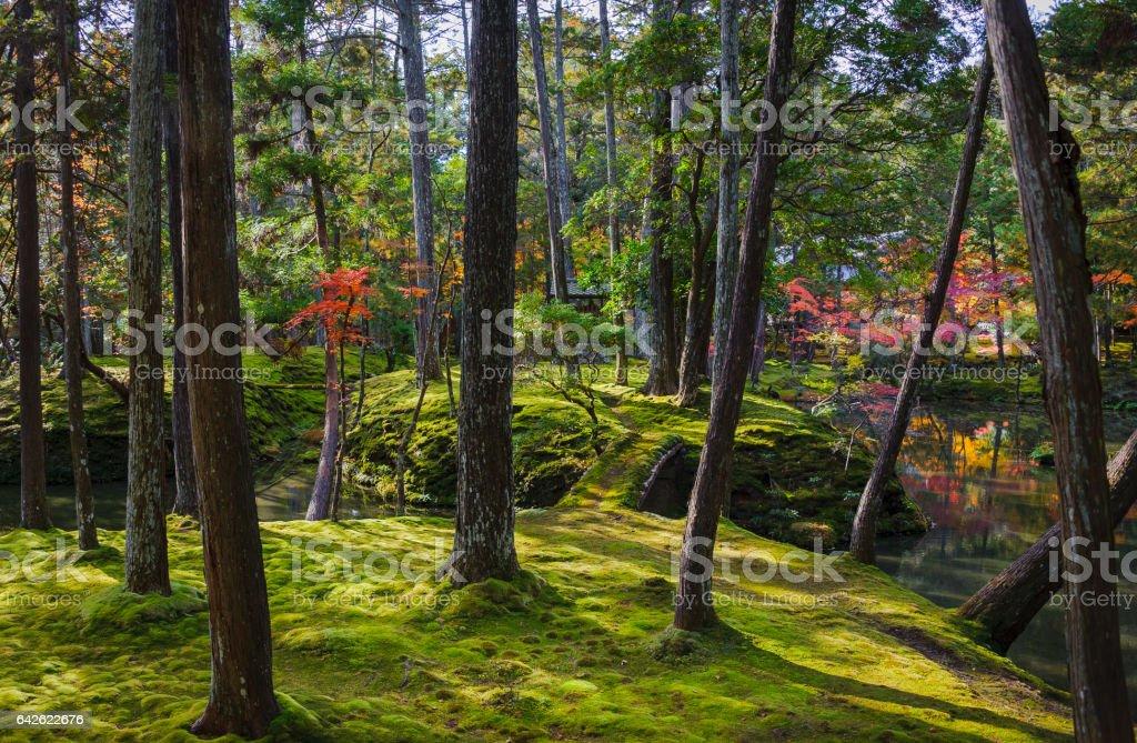 Temple Islands stock photo