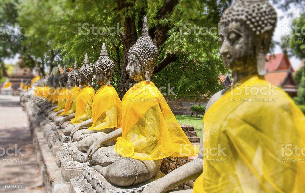 Temple of Ayuthaya, Thailand royalty-free stock photo