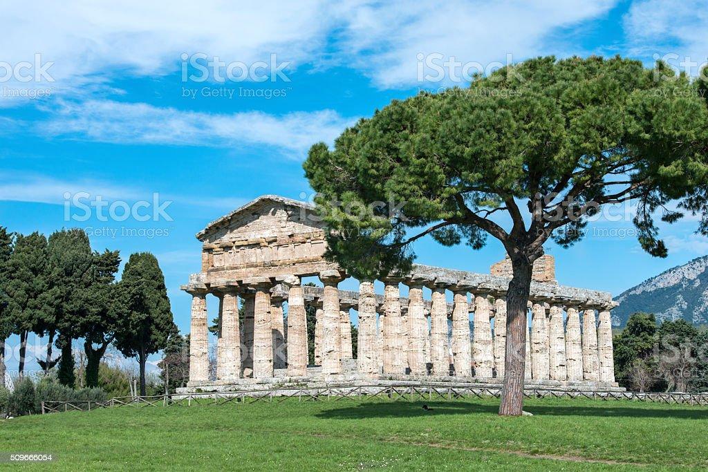 Temple of Paestum - Salerno - italy stock photo