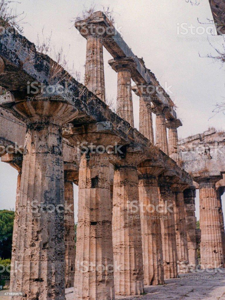 Temple, Paestum stock photo