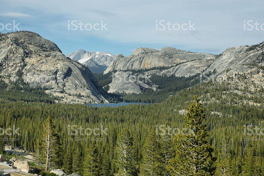 Tenaya lake in Tioga Pass, Yosemite stock photo