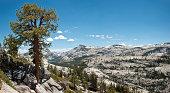 Tenaya Peak and Yosemite High Country
