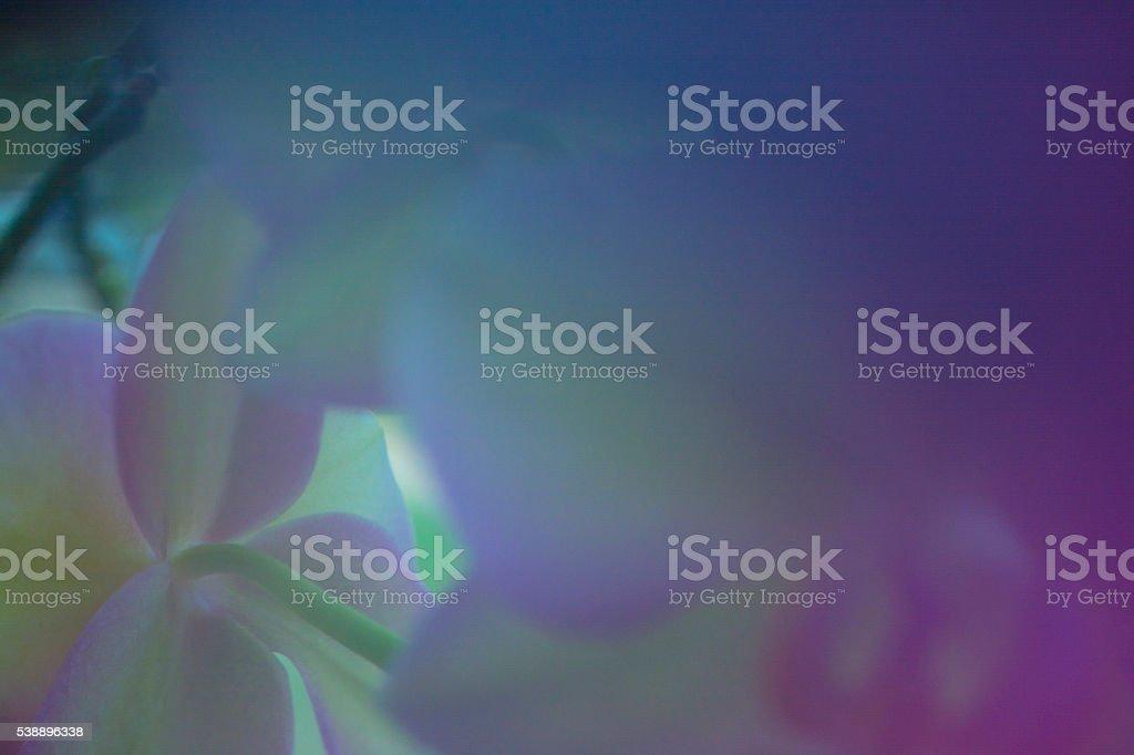 Tender blur photo texture background stock photo