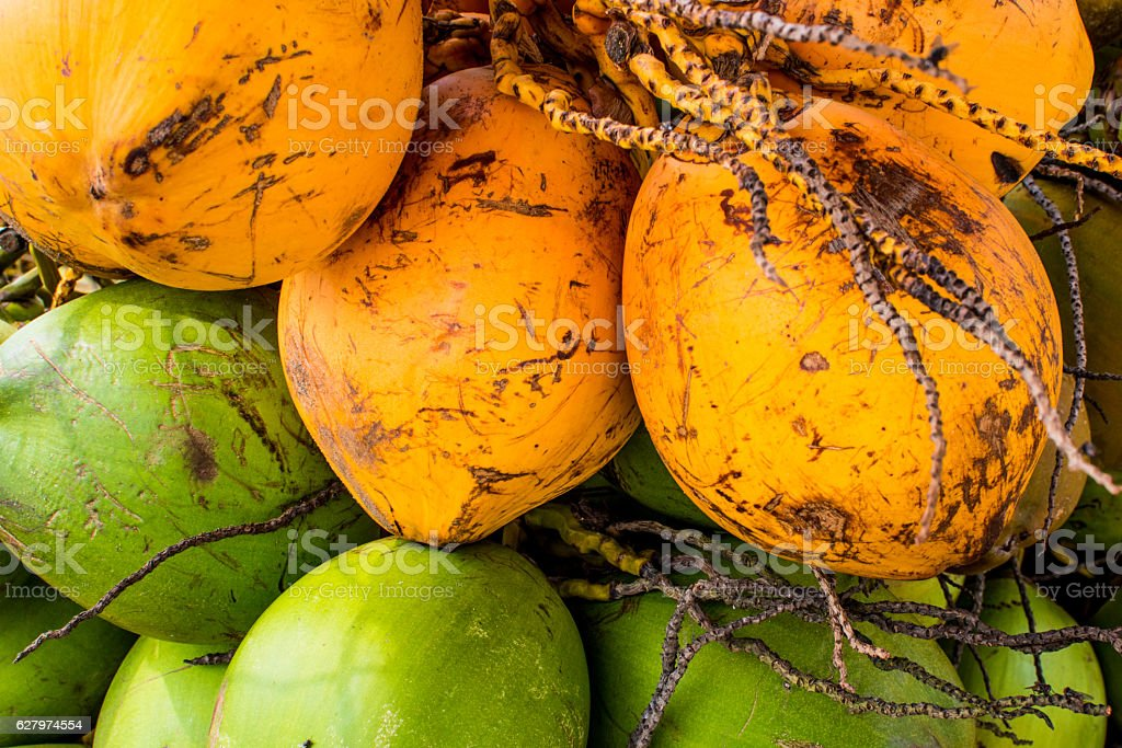 Tender coconuts. stock photo