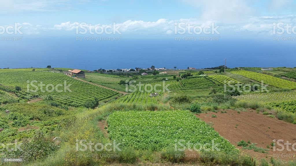 Tenerife Landscape stock photo