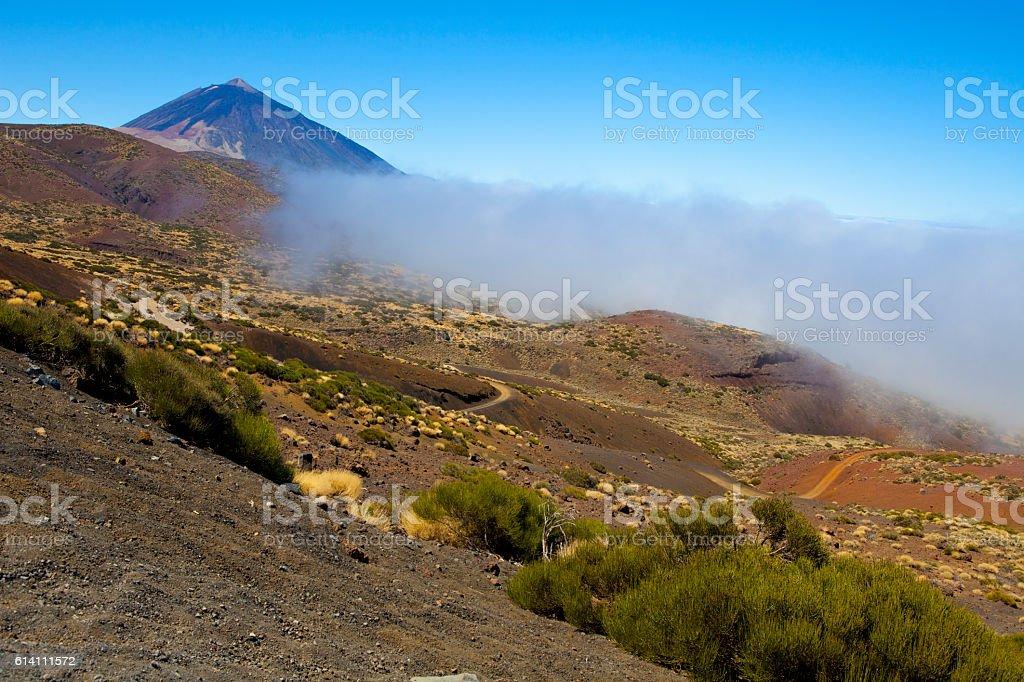 Tenerife's Teide National Park stock photo