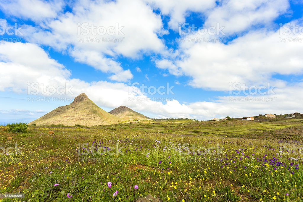 Teneriffa meadow and mountain on a sunny day royalty-free stock photo