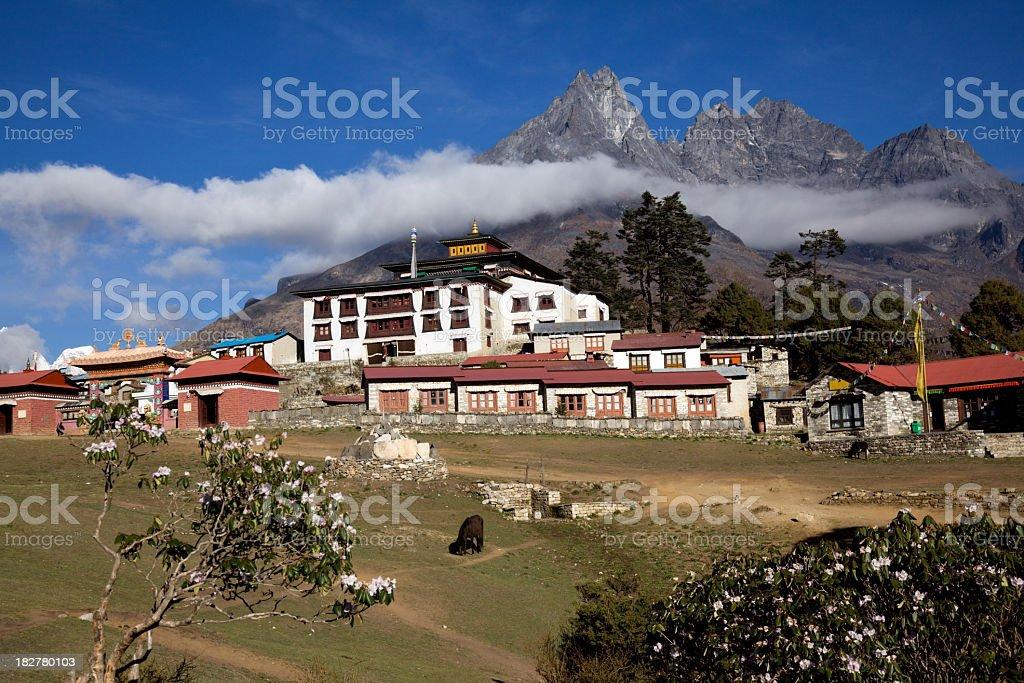 Tengboche Monastery Panorama stock photo