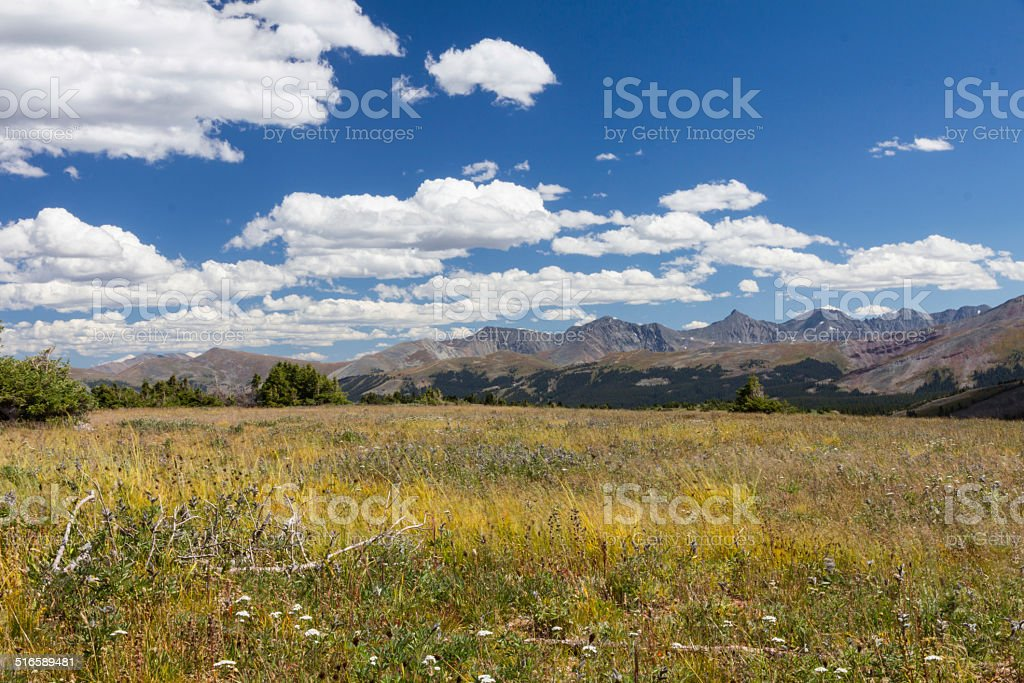 Tenmile Range from Shrine Mountain Meadows on a windy day stock photo