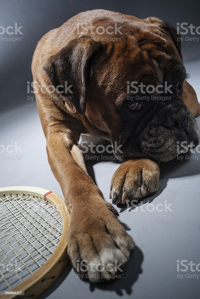 Tennis palyer royalty-free stock photo