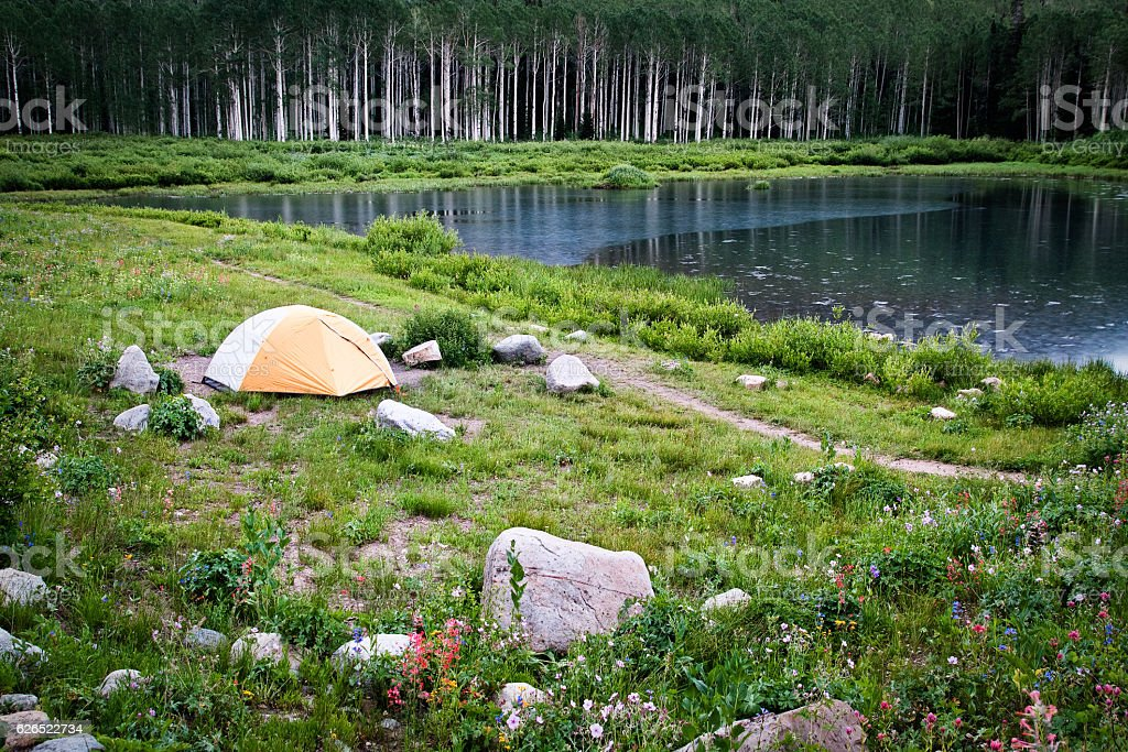Tent By Lake and Wildflowers stock photo