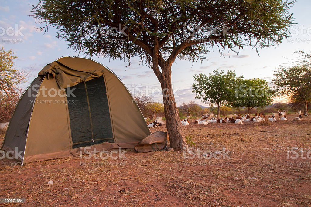 Tent By The Tree In Africa stock photo